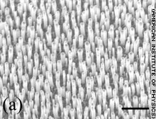 Antennen fuer Licht aus Kohlenstoff Nanoroehren